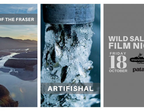 Join us for a Wild Salmon Film Night in Revelstoke, Oct 18th