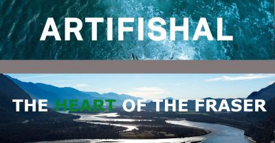 Artifishal and Heart of the Fraser