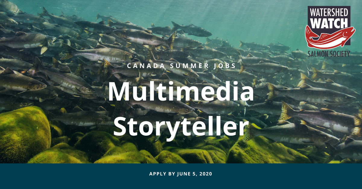 Job: Multimedia Storyteller