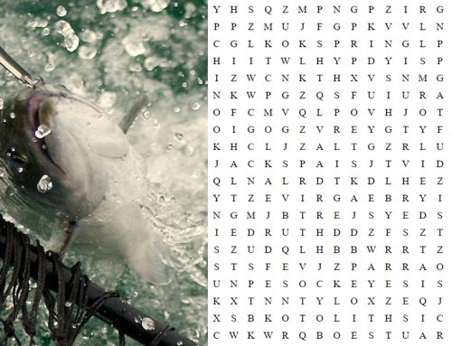 Salmon Word Search