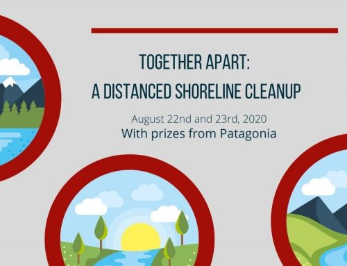 Join us for a socially-distanced shoreline clean up, Aug 22 & 23
