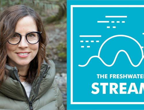 Check out season 1 of the Freshwater Stream!