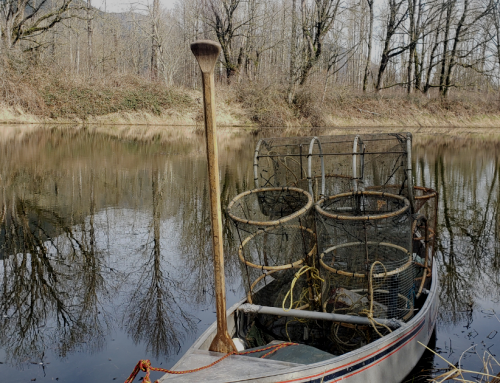 Meghan Rooney: Resilient Waters Fieldwork — One Month In