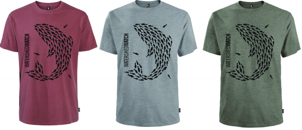 t shirts in 3 colours