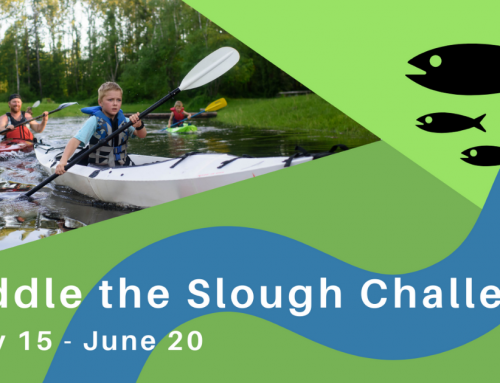 Join our Paddle the Slough Challenge!