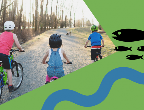 Bike the Dike with Watershed Watch