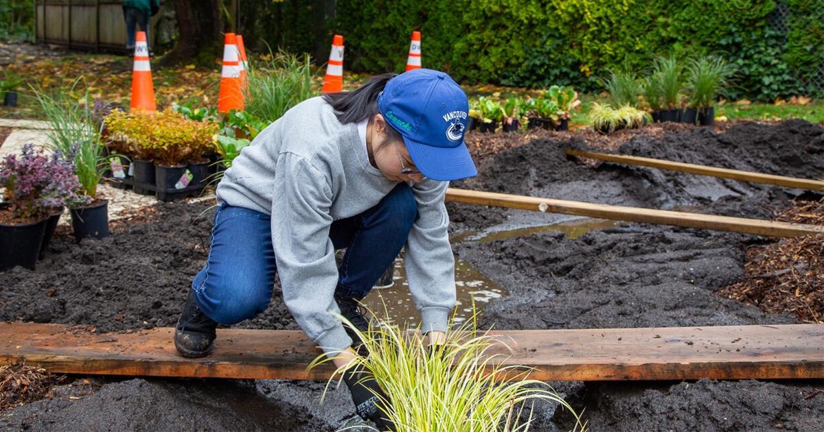 woman building a rain garden