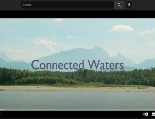 Watch our new short-film, Connected Waters, online now!